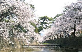 120409_syukugawa.jpg